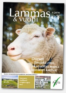 lammas_vuohi_4_2016vino
